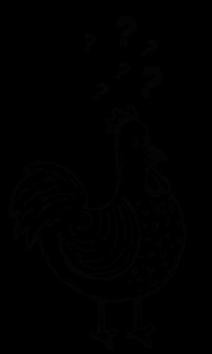 Santo-Taqueria-guia-principiantesnegro
